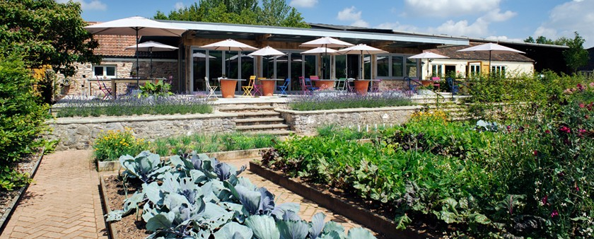 Yeo Valley Organic Cafe and Garden - Westwind Oak